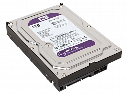 Жесткий диск Western Digital Purple WD10PURZ, 1000Gb,  3.5